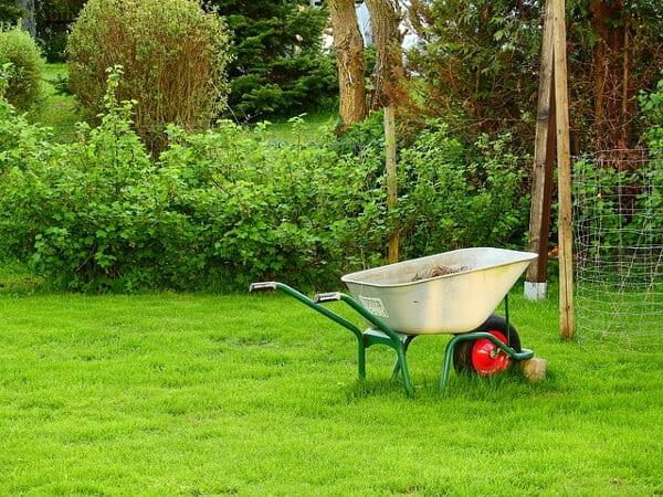 Sommarjobb för 13-åringar kan vara trädgårdsarbete och parkunderhåll