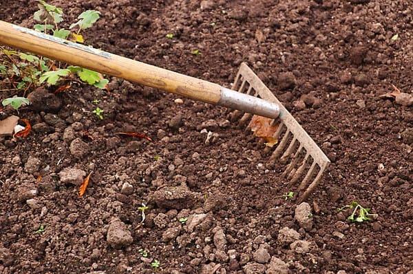 Sommarjobba med att sköta trädgårdar